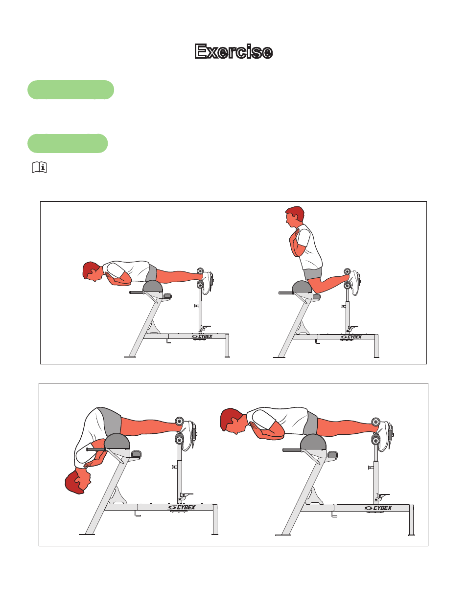 background image. 10. Cybex Owners Manual. Exercise