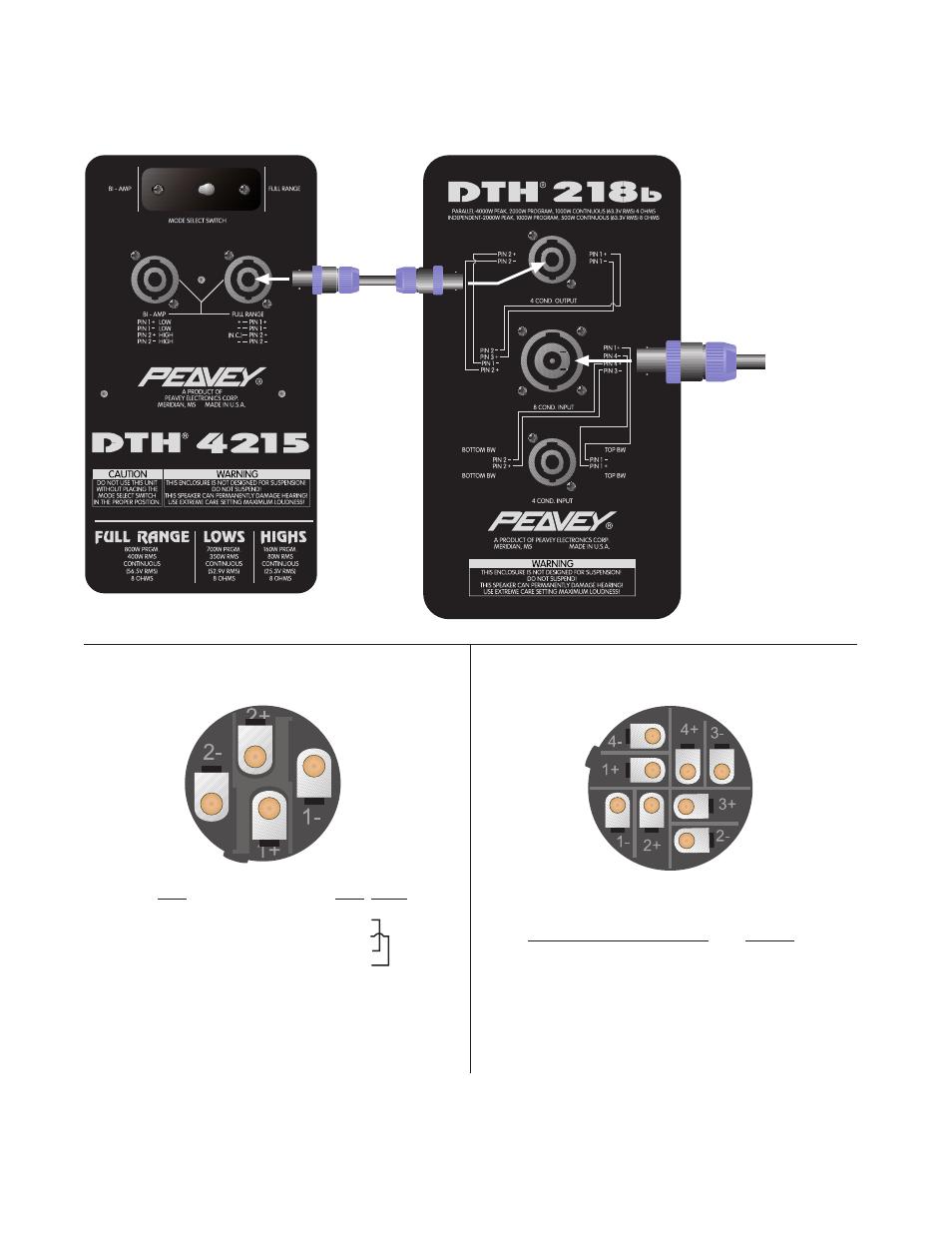 Wiring Diagram  Pin Speakon  Number  Wire Scheme