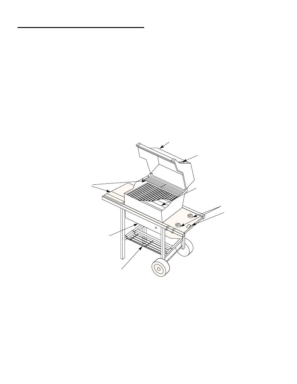 weber SPIRIT 500 LX User Manual | Page 5 / 32