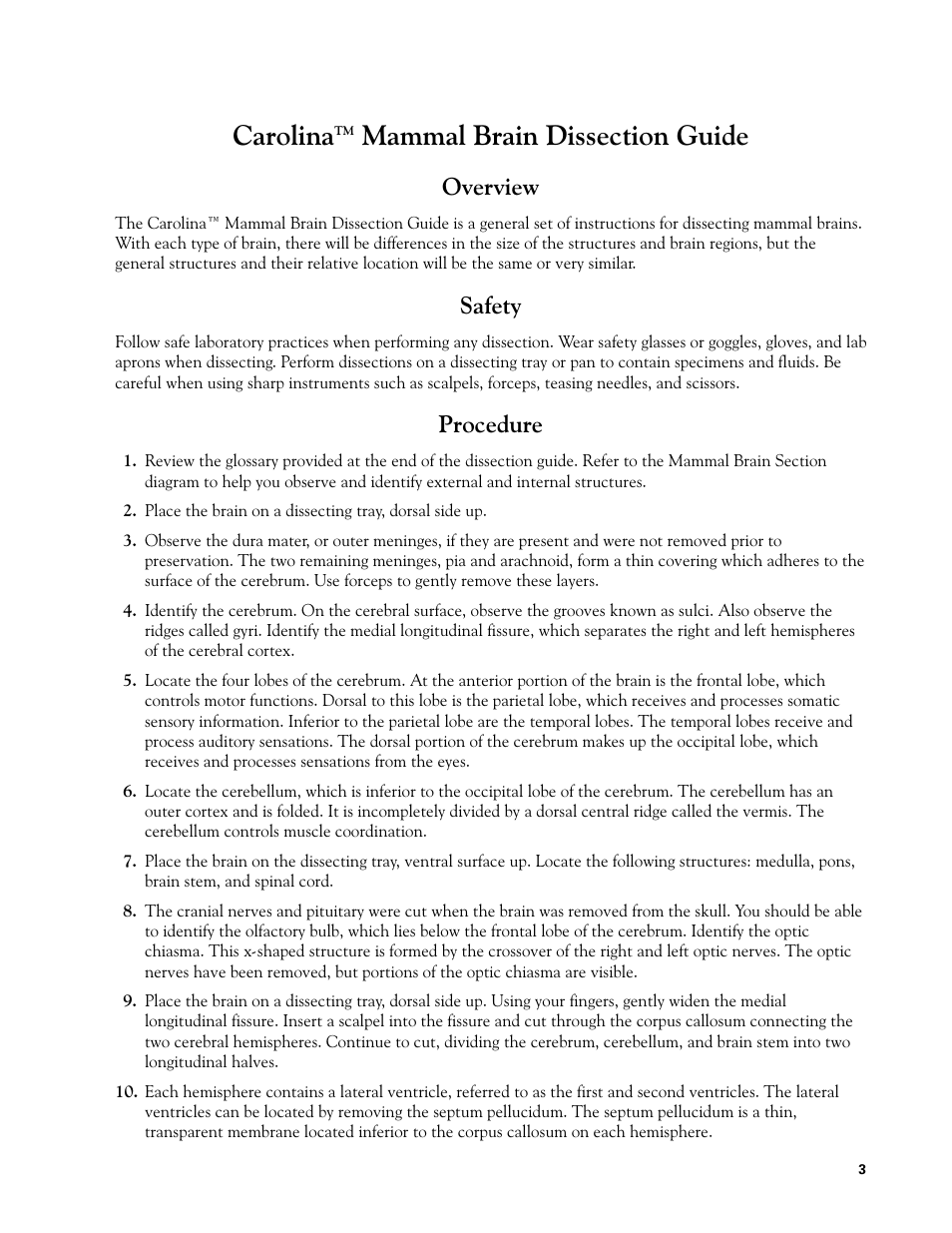 Consciousness Illness And Belief Brain Diagram Two Manual Guide