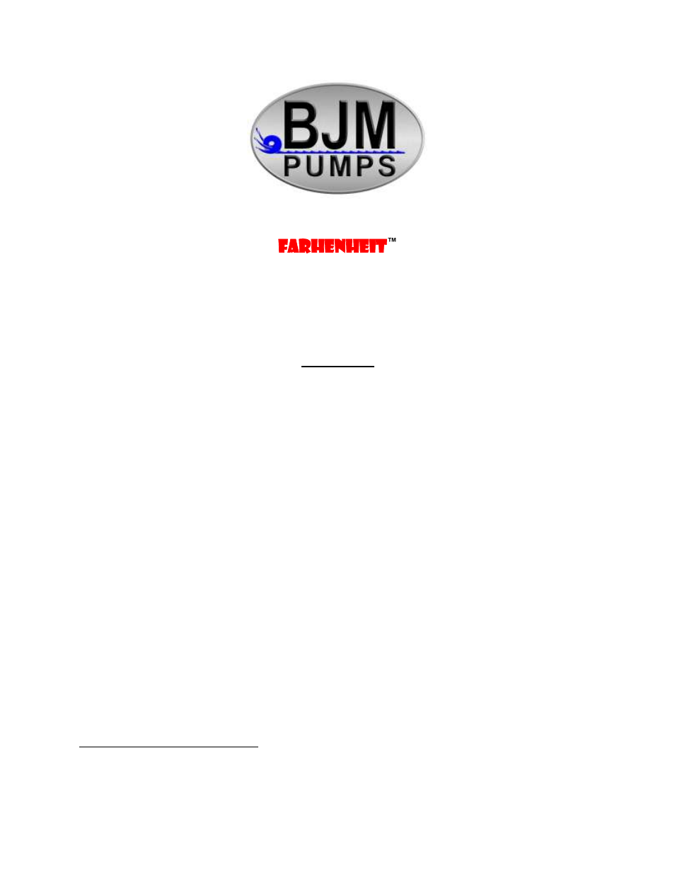 BJM Pumps KZN(R)-F SERIES HEAVY DUTY AGITATOR TOP DISCHARGE