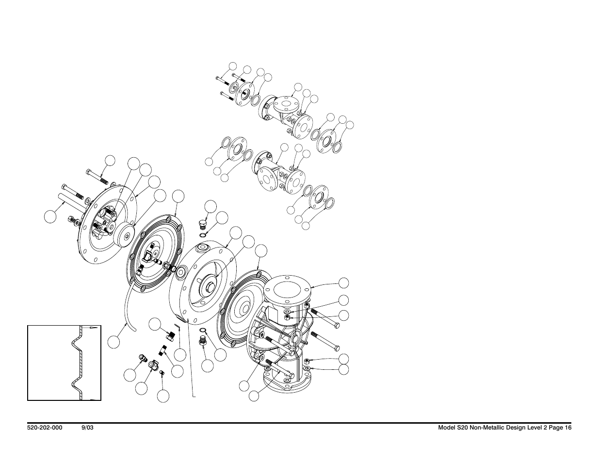 Ruppguard  Option For Tpe Equipped Pumps Drawing