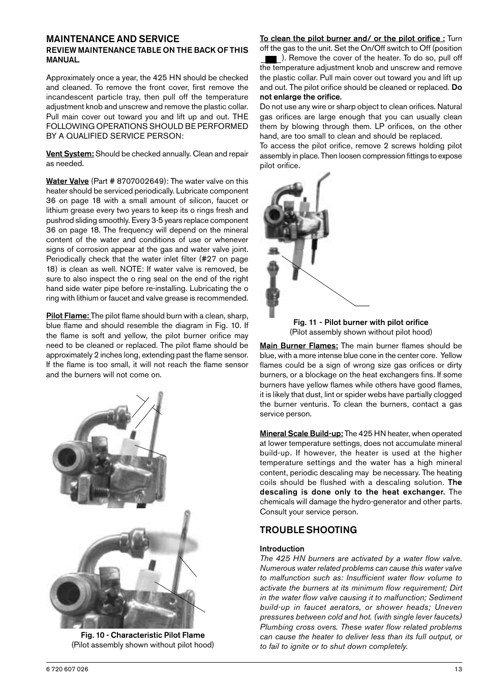 Maintenance And Service Trouble Shooting Bosch Gwh 425 Hn User Clean Burn Burner Wiring Diagram Manual Page 13 24