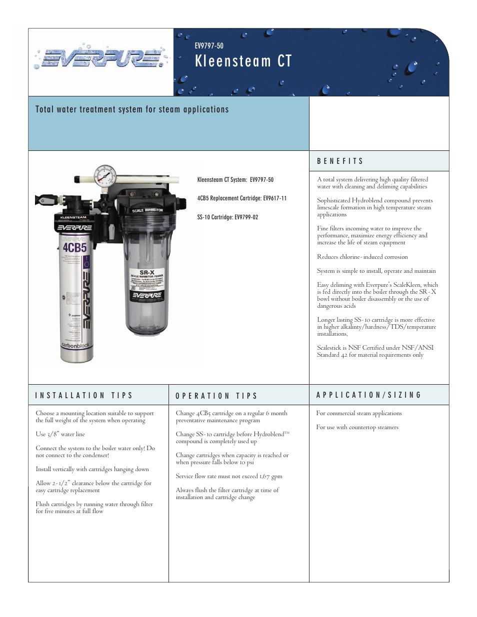 Everpure Kleensteam Ct System EV979750